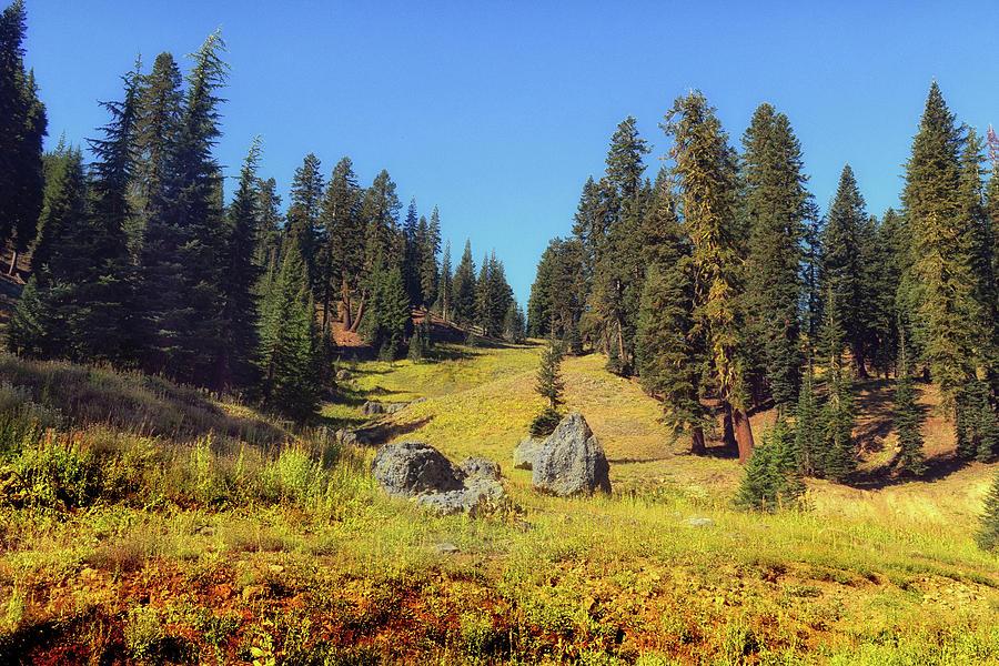 Alpine Meadows Painting - Mount Lassen Volcanic National Park by Frank Wilson