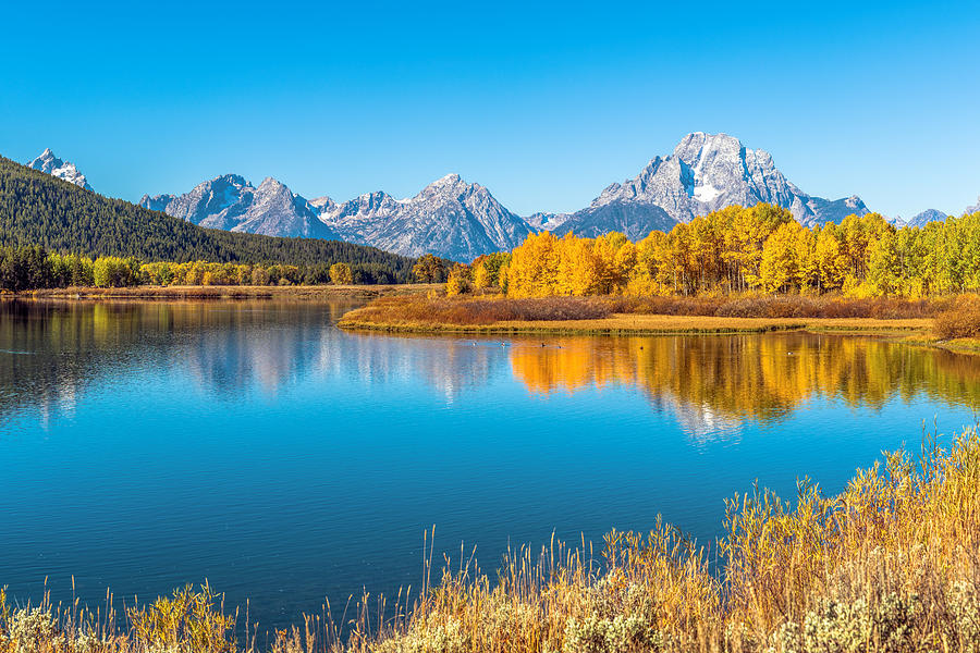 Aspen Photograph - Mount Moran from the Snake River in Autumn by James Udall
