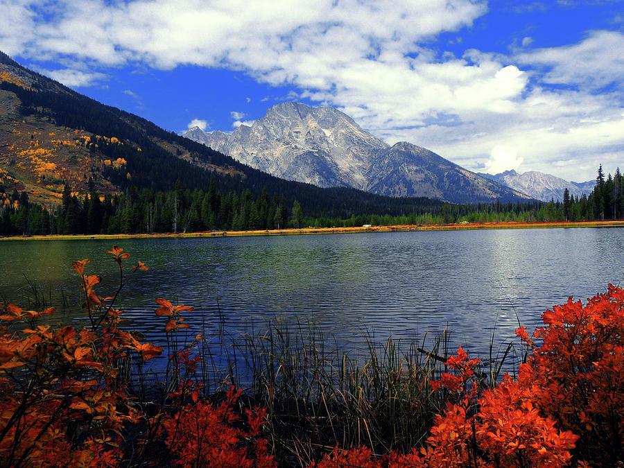 Mount Moran Photograph - Mount Moran In The Fall by Raymond Salani III