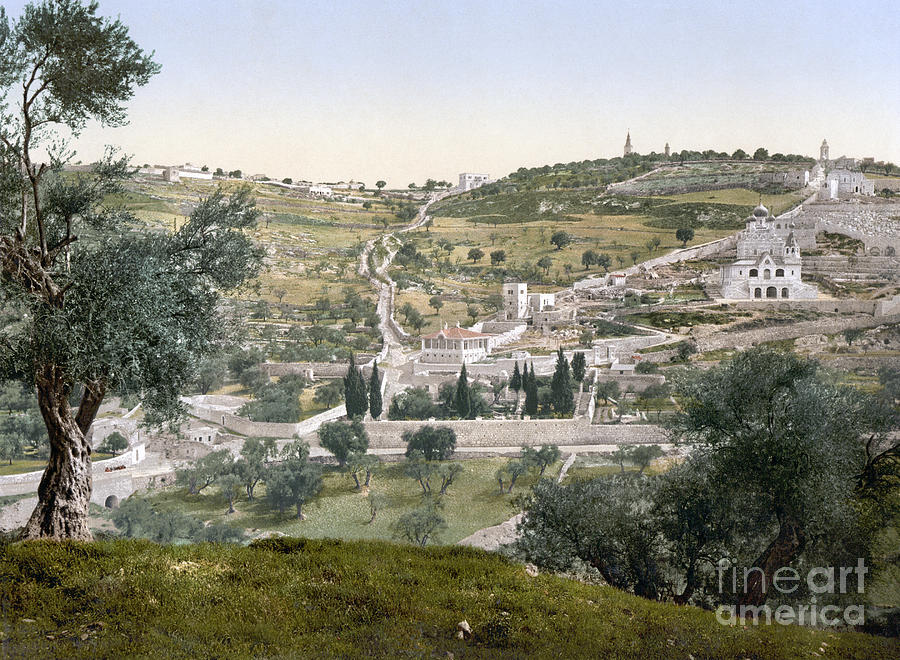 1900 Photograph - Mount Of Olives, C1900 by Granger