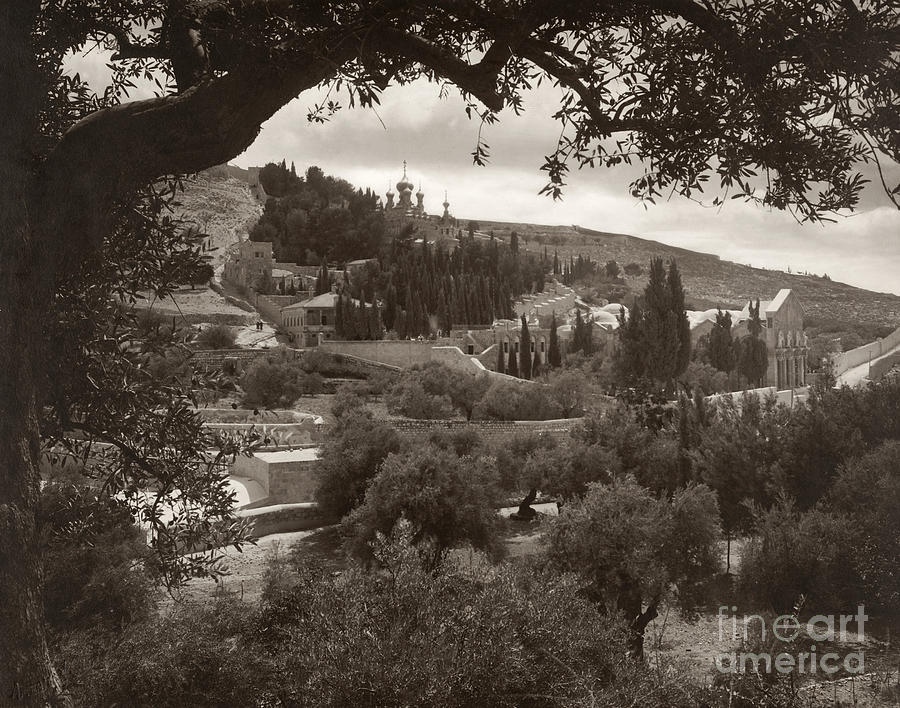 1930 Photograph - Mount Of Olives by Granger