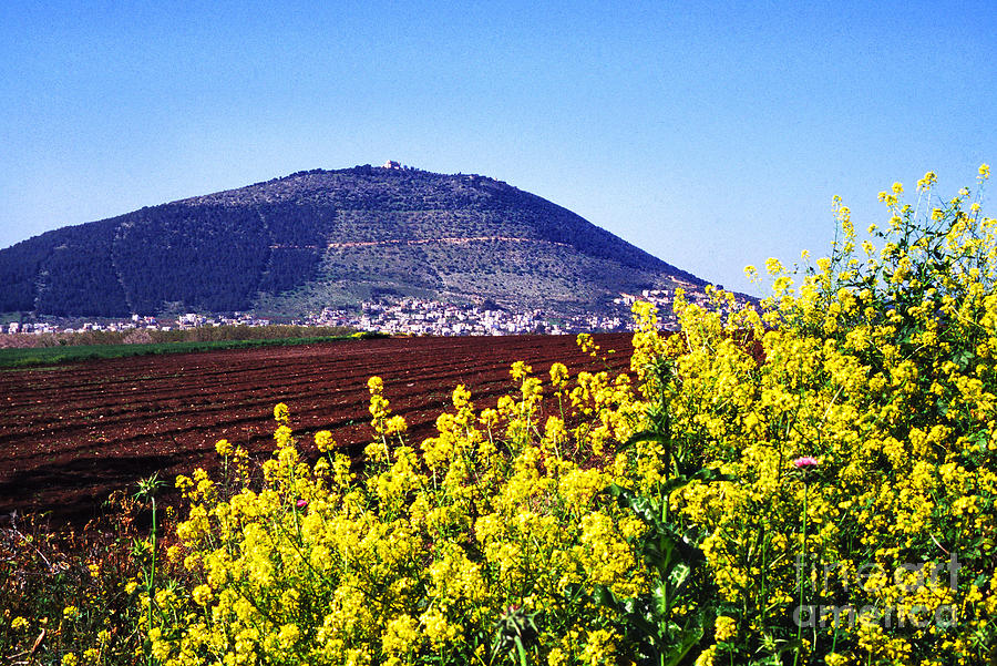 Mount Tabor Photograph - Mount Of Transfiguration by Thomas R Fletcher
