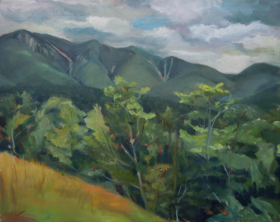 Mount Osceola from the Kank in New Hampshire by Nancy Griswold