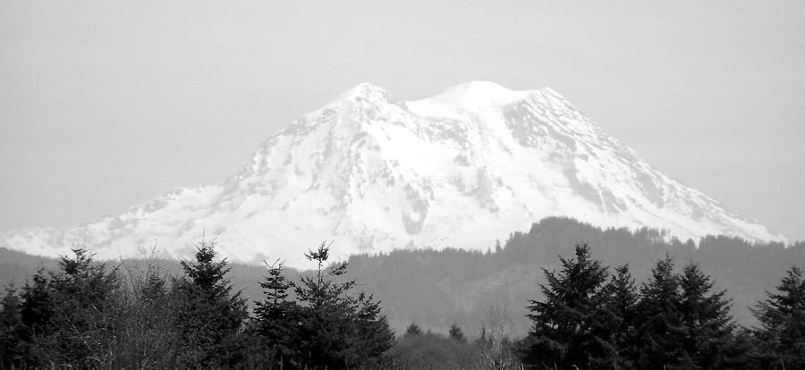 Nature Photograph - Mount Rainier Black And White by Laurie Kidd