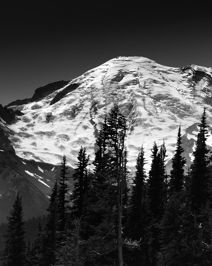 Mount Rainier National Park Photograph - Mount Rainier Emmons And Winthrop Glaciers Washington  by Brendan Reals