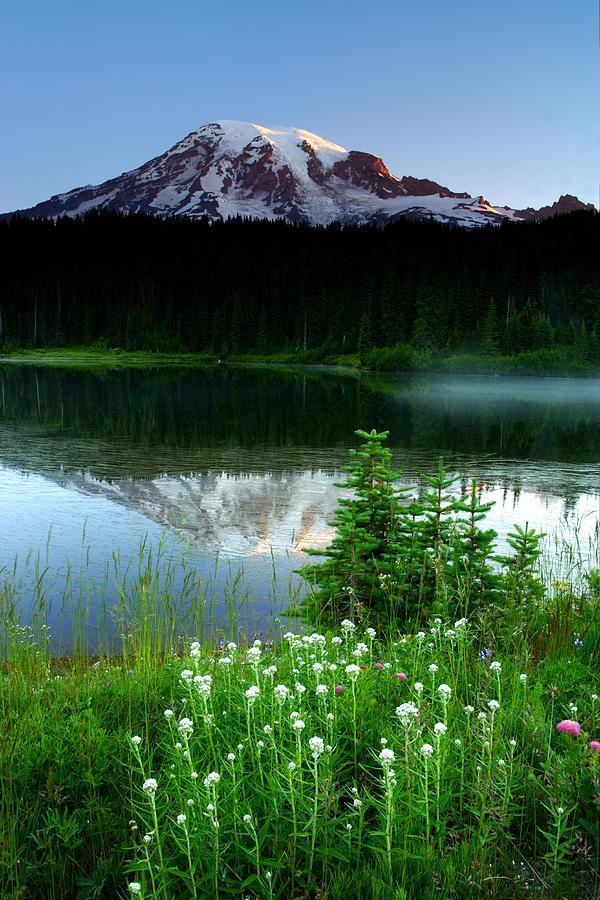 Washington Photograph - Mount Rainier Reflections by Eric Foltz