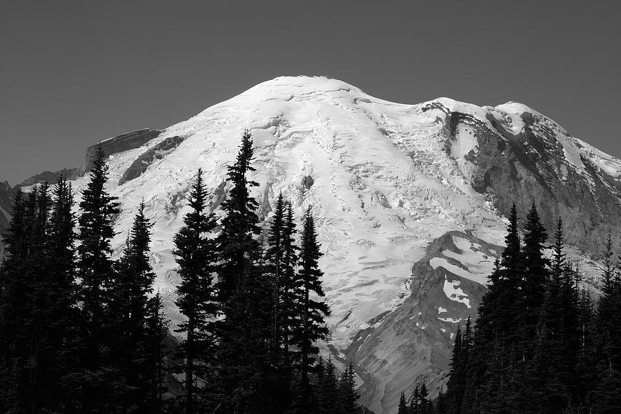 National Park Photograph - Mount Rainier by Sonja Anderson