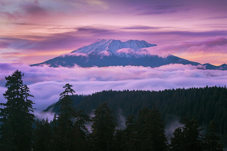 Mount St Helens Photograph - Mount Saint Helens Sunset by David Gn