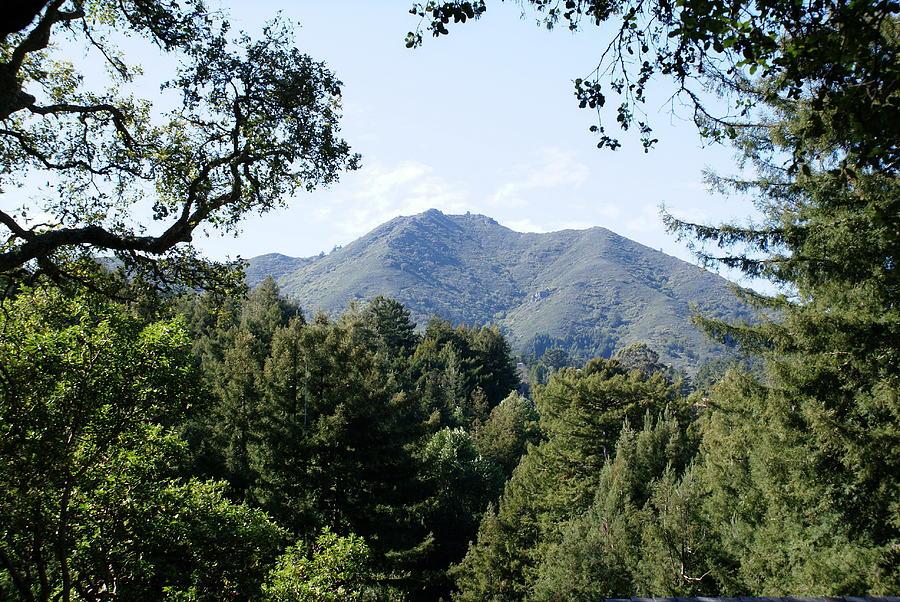 Mount Tamalpais Photograph - Mount Tamalpais From King Street 2 by Ben Upham III