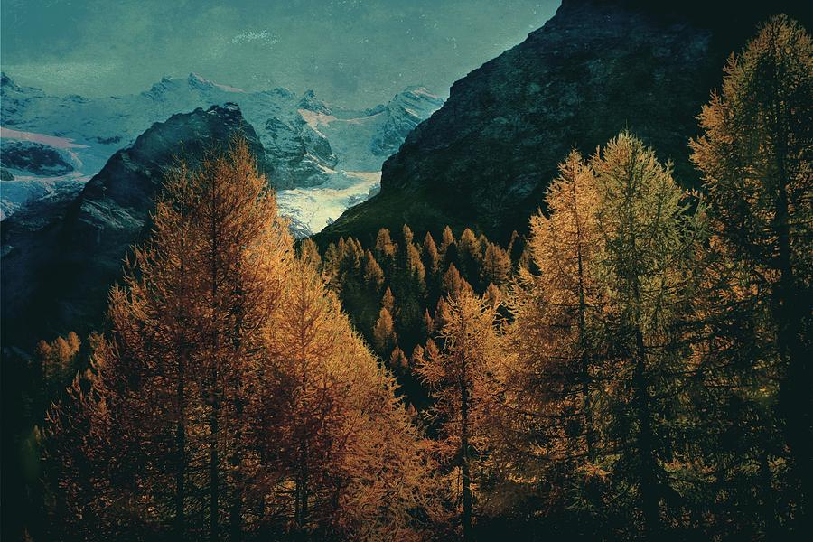 Mountain autumn by Vittorio Chiampan