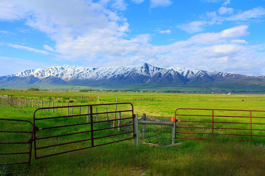 Mountain Landscape Photograph - Mountain Beauty by Goldie Pierce