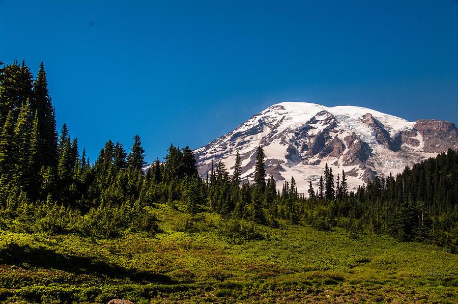 Mt Rainier Photograph - Mountain Glow by Myra Wilson