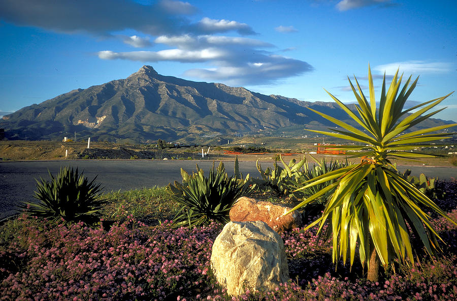 Mountain Photograph - Mountain In Marbella by Carl Purcell