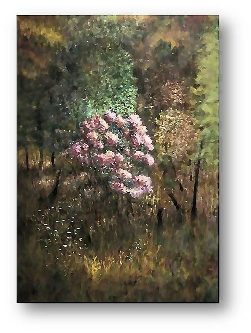 Mountain Laurel Painting - Mountain Laurel by Brian Higgins
