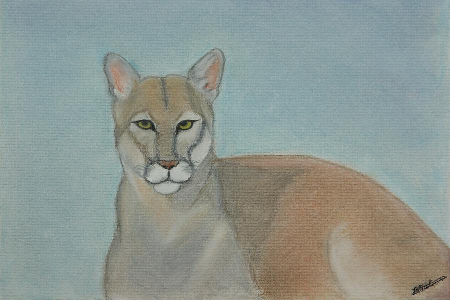 Mountain Lion Painting - Mountain Lion - Pastels - Color - 8x12 by B Nelson