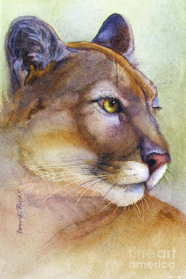 Cougar Painting - Mountain Lion by Bonnie Rinier