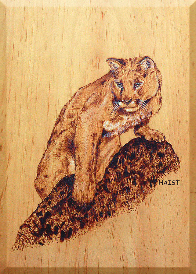 Cat Pyrography - Mountain Lion by Ron Haist