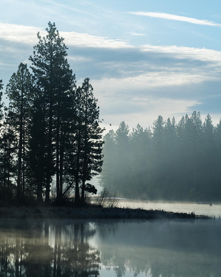 Westwood Photograph - Mountain Meadows Reservoir At Dawn by The Couso Collection