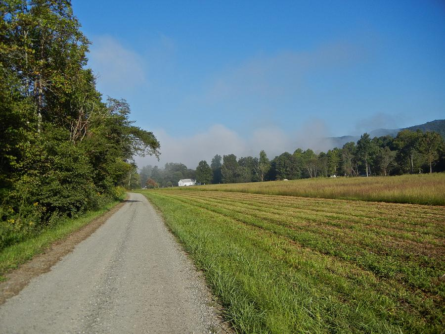 Landscape Photograph - Mountain Mist On Country Road by Alan Olansky