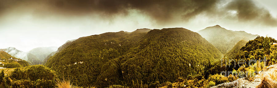 Tasmania Photograph - Mountain Of Trees by Jorgo Photography - Wall Art Gallery