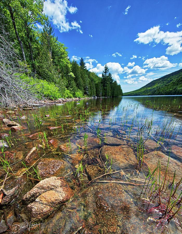 Mountain Pond by David A Lane