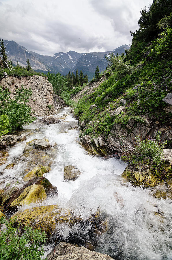 Glacier Photograph - Mountain River by Margaret Pitcher