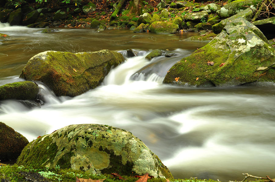 Photograph - Mountain Stream 3 by William Jones
