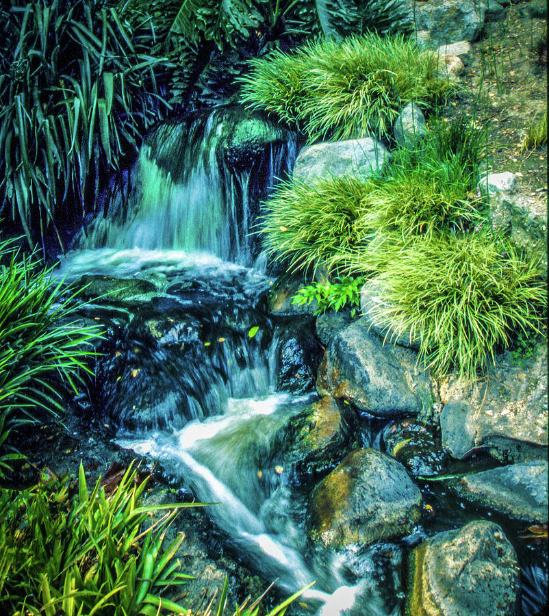 Mountain Stream by Samuel M Purvis III