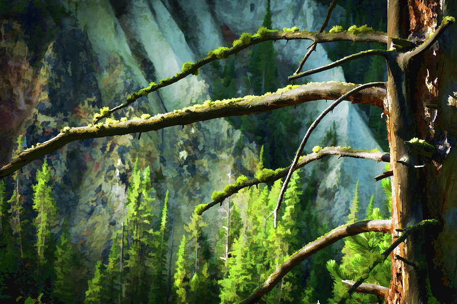 Mountain Sunrise by Carl Simmerman