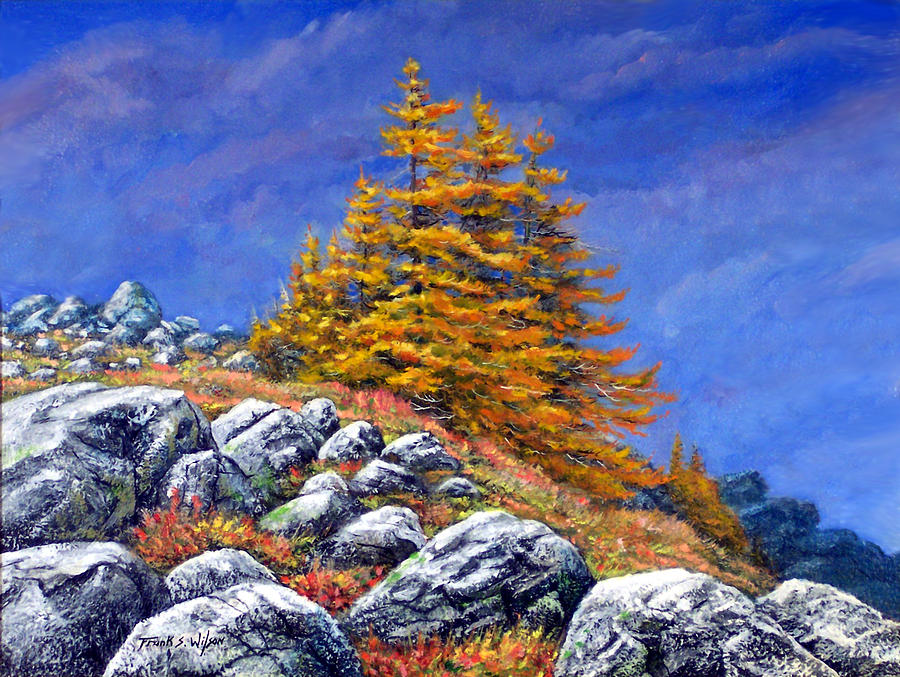 Mountains Painting - Mountain Tamaracks by Frank Wilson