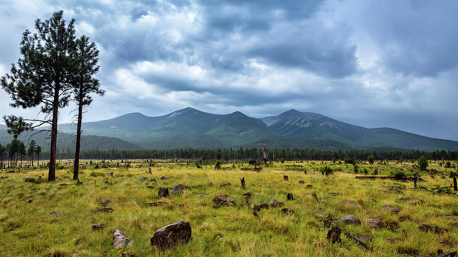 Arizona Photograph - Mountain View After Rain by CEB Imagery