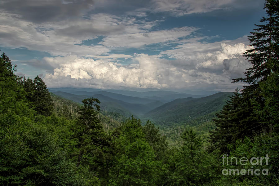 Mountain view from Clingmans Dome by Barbara Bowen