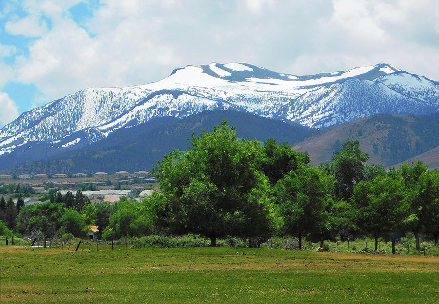 Mountains Photograph - Mountain View - Reno Nevada by Emmy Vickers