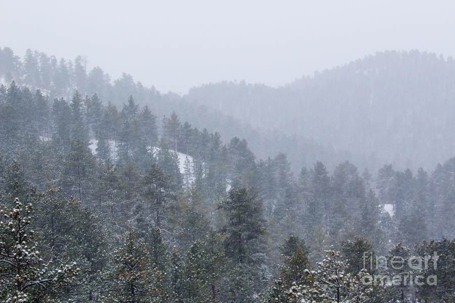 Mountains Of The Pike National Forest In Snow Photograph