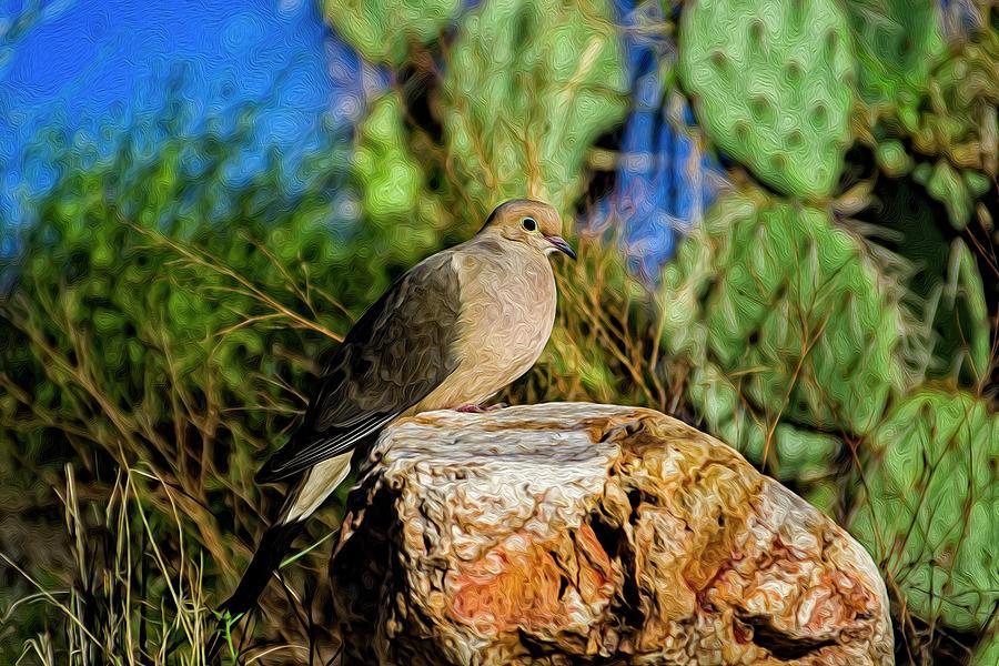 Mourning Dove Op7 Digital Art