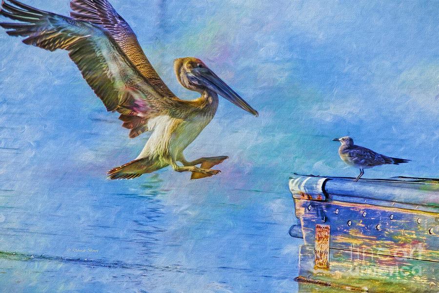 Pelican Photograph - Move Over by Deborah Benoit