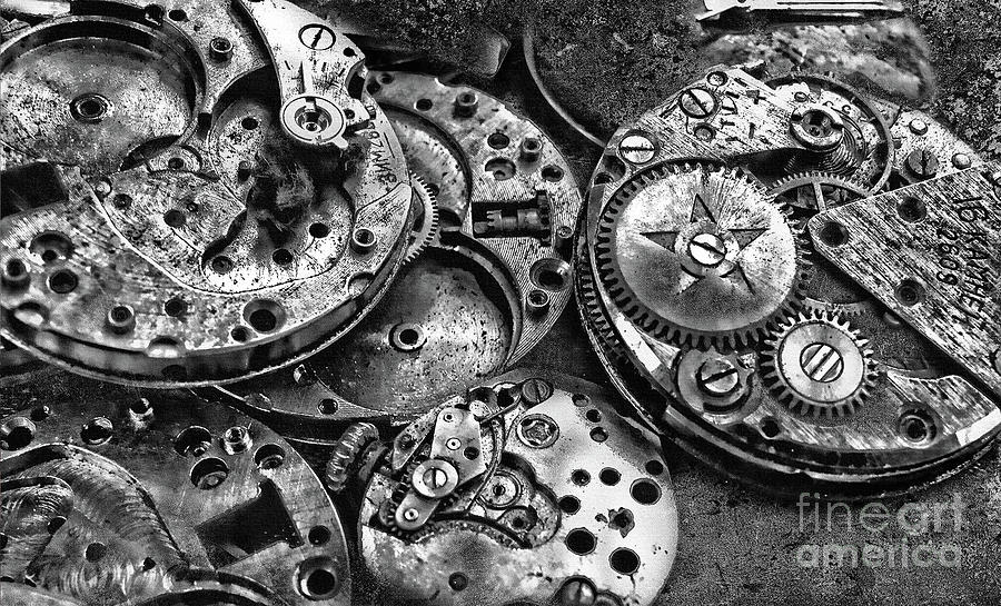 Movement, Watch Mechanism in Black and White by Daliana Pacuraru
