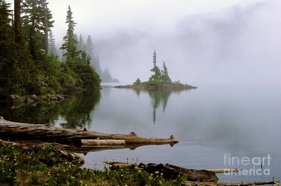 Nature Photograph - Mowich Lake In Fog  by Jim Corwin