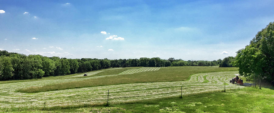 Mowing the Hayfield by Cricket Hackmann