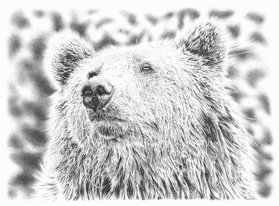 Mr. Bear by Remrov