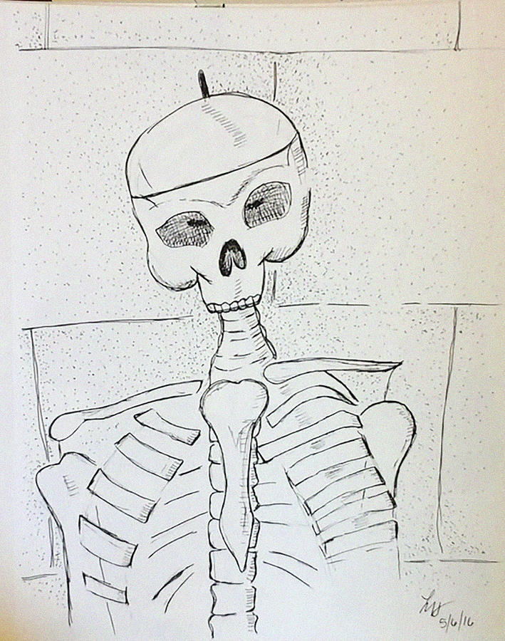 Skeleton Drawing - Mr Coopers Aide by Loretta Nash