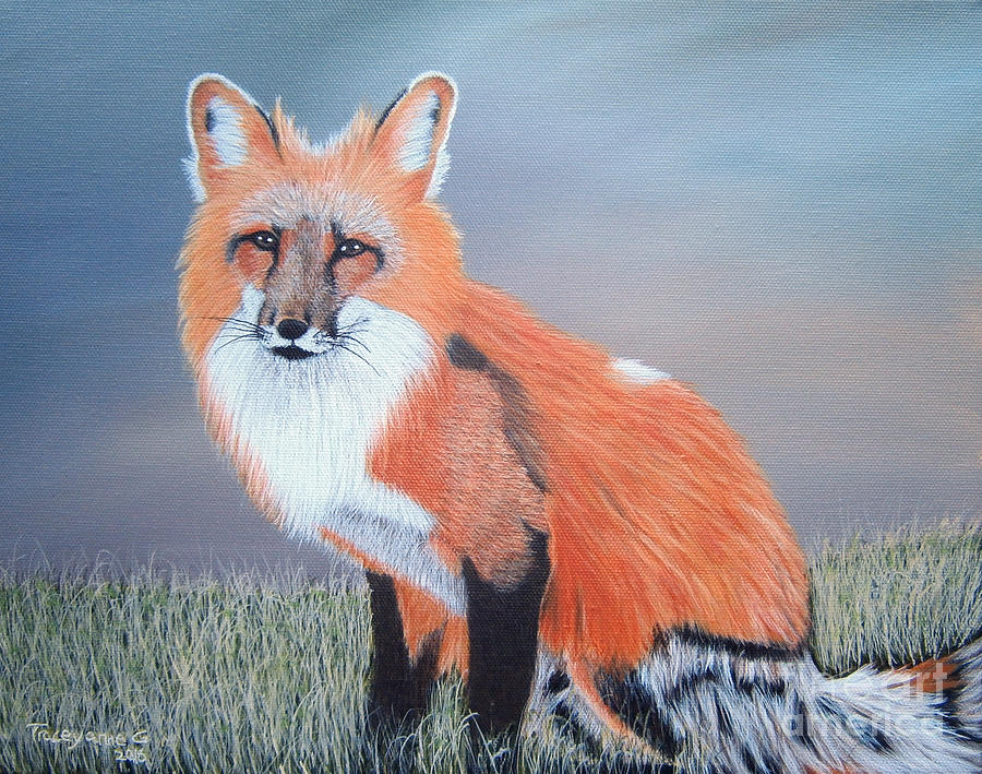 Mr. Fox by Tracey Goodwin