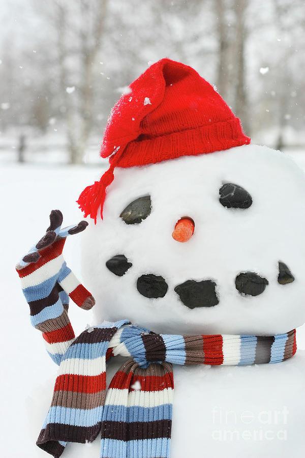 Background Photograph - Mr. Snowman by Sandra Cunningham