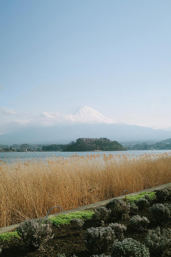 Landscape Photograph - Mount Fuji View by Yan Motta