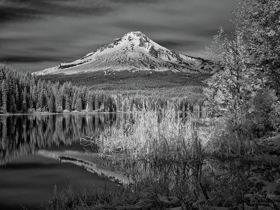 Mt Hood #8 Photograph