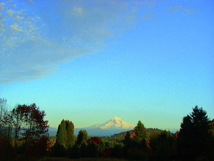 Mt. Hood Photograph - Mt Hood just before sunset by Lisa Rose Musselwhite