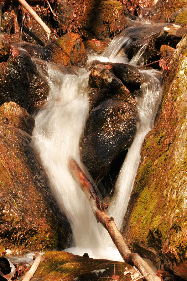 Water Photograph - Mt Jasper Cascades IIi by Frank LaFerriere