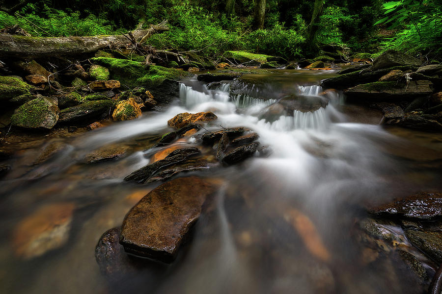 Water Photograph - Mt. Mitchell State Park - Cascade  by Jason Penland