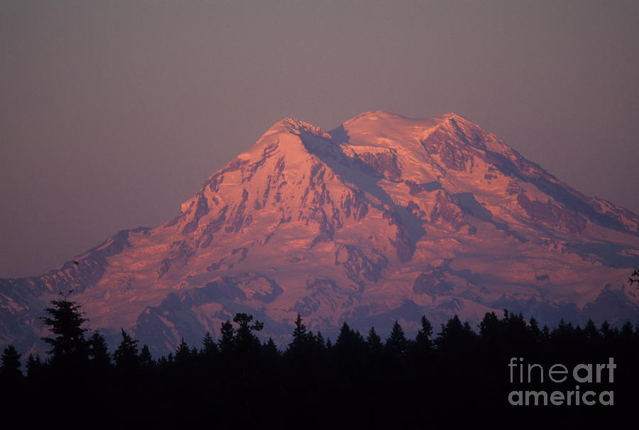 Glaicier Photograph - Mt. Rainier Washington by Robert  Torkomian