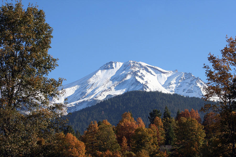 Nature Photograph - Mt. Shasta Framed by Holly Ethan